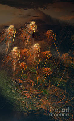 Photograph - Weeds by David Arment