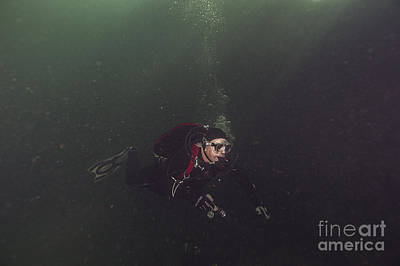 Photograph - Welland Train Bridge Diver by JT Lewis