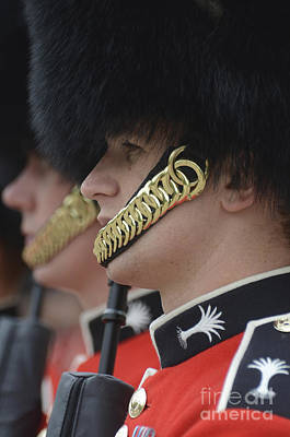 Foreign Military Photograph - Welsh Guards Stand In Formation by Andrew Chittock