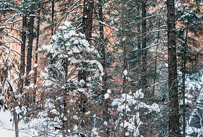 West Fork Snow Art Print