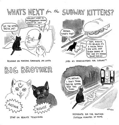 Fat Cat Wall Art - Drawing - What's Next For The Subway Kittens by Emily Flake