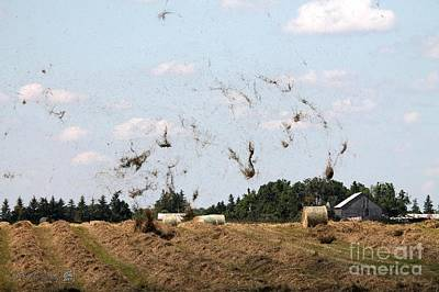 Photograph - Whirlwind In The Hay Field by J McCombie