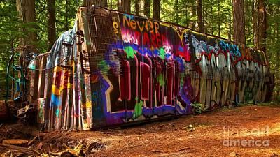 Photograph - Whistler Train Wreck Box Car by Adam Jewell