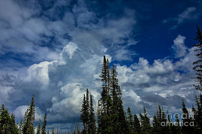 Photograph - White Cloud by Rick Bragan