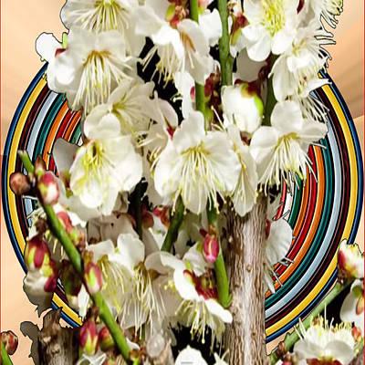 Mixed Media - White Flower Medley Colorful Rainbow Stripes On The Backdrop Artist Navinjoshi  by Navin Joshi