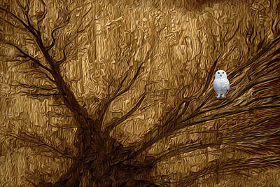 Small Trees Digital Art - White Owl by Jack Zulli
