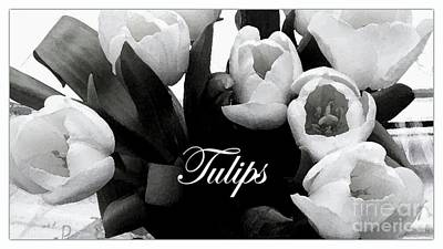 Photograph - White Tulips by Joan-Violet Stretch