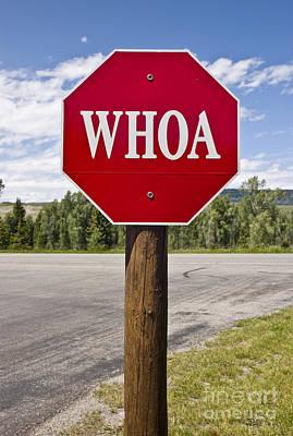 Whoa Stop Sign Print by Rafael Macia