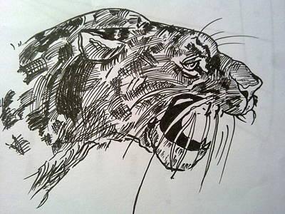Cheetah Drawing - Wild Cheetah by Poornima Ravi