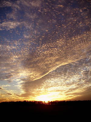 Art Print featuring the photograph Wild Sky 2 by Cynthia Lassiter