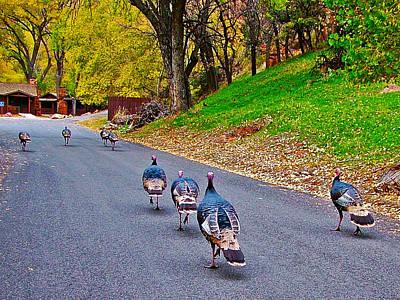 Wild Turkey Parade In Zion National Park-utah   Art Print