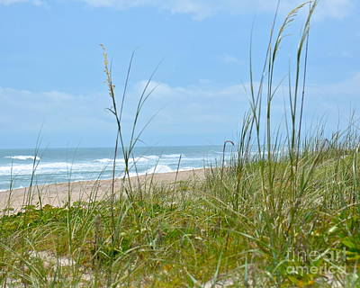 Photograph - Archie Carr Beach And Wildlife Refuge by Carol  Bradley