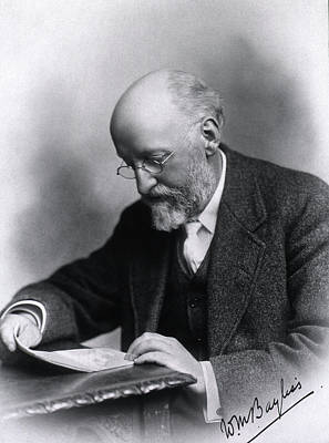 Physiology Photograph - William Bayliss by National Library Of Medicine
