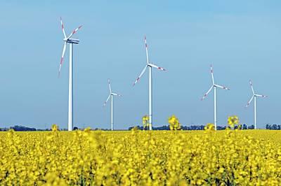 Wind Turbines In Rapeseed Field Art Print by Bildagentur-online/mcphoto-schulz