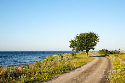 Photograph - Winding Gravel Road  by Kennerth and Birgitta Kullman