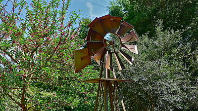 Photograph - Windmill by Denise Mazzocco