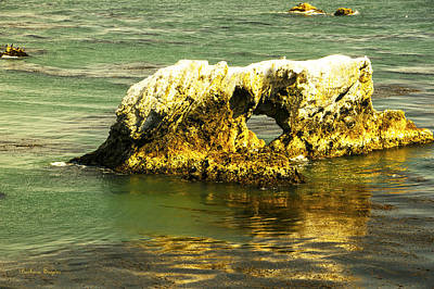 Photograph - Window Rock Pismo Beach California by Barbara Snyder