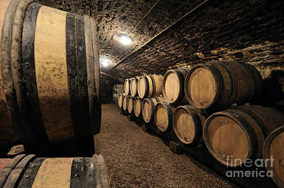 Wine Barrels In A Cellar. Cote D'or. Burgundy. France. Europe Art Print