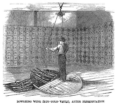Winemaking Painting - Winemaking Vault, 1866 by Granger