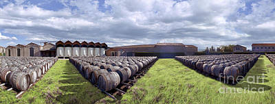 Photograph - Winery Wine Barrels Outside Clouds Panorama by David Zanzinger