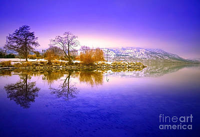 Photograph - Winter Glow by Tara Turner
