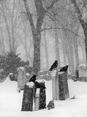 Winter Graveyard With Crows In Falling Snow  Print by Gothicrow Images