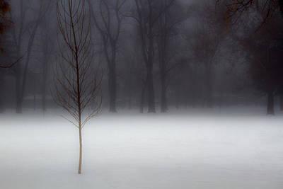 Photograph - Winter In The Park by Douglas Pulsipher