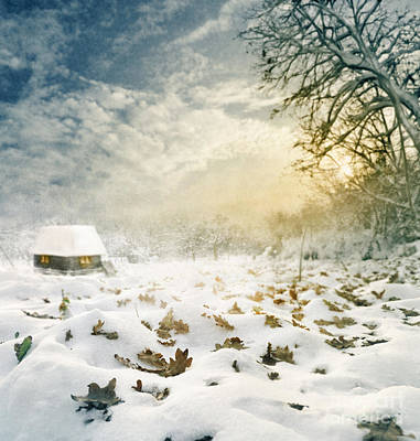 Rural Art Digital Art - Winter by Jelena Jovanovic
