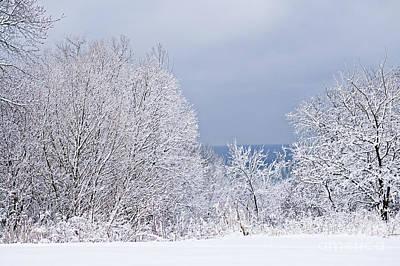 Frozen Photograph - Winter Landscape by Elena Elisseeva