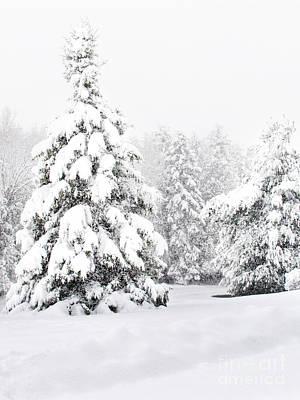 Cartoons Tees - Winter Landscape by Gwen Gibson