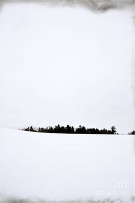 Snow Covered Fields Photograph - Winter Minimalism by Edward Fielding