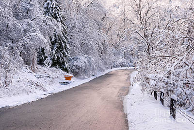 Photograph - Winter Road After Snowfall by Elena Elisseeva