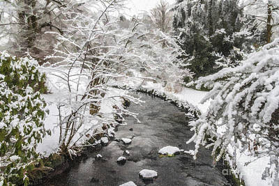 Digital Art - Winter Stream by Liz Leyden