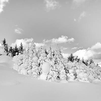 Photograph - Winter Time by Frodi Brinks