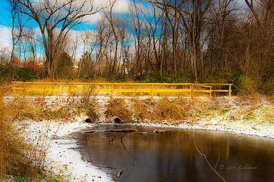 Photograph - Winter Walkway by Edward Peterson