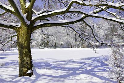 Photograph - Winter Wonderland by Allen Beatty