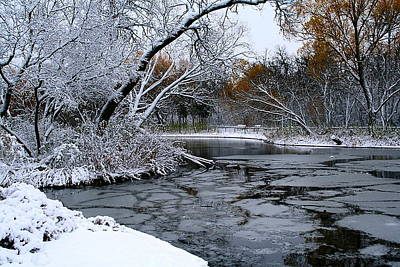Print featuring the photograph Winter Wonderland by Larry Trupp