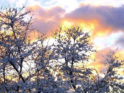 Digital Art - Wintry Sunset by Will Borden