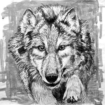 Wolf Original by Ian Keith Murray