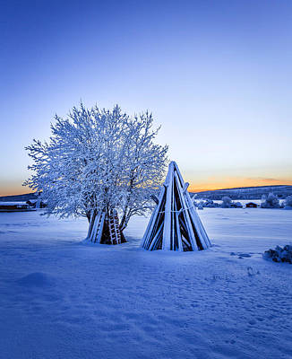 Cold Temperature Photograph - Wood Stacked And A Snow Covered Tree by Panoramic Images