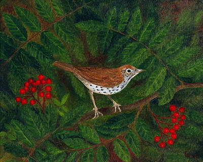 Painting - Wood Thrush In Rowan by FT McKinstry
