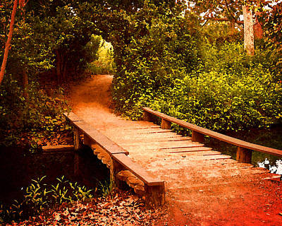 Photograph - Wooden Footbridge by Timothy Bulone