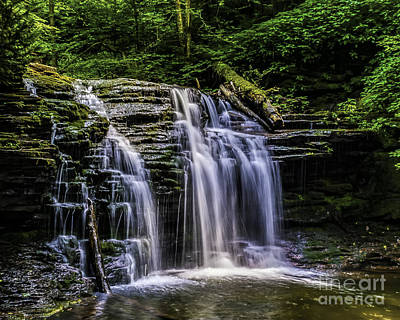 Photograph - Woodland Waterfall by Nick Zelinsky