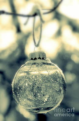Photograph - Xmas Ball by France Laliberte