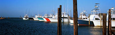 Charters Photograph - Yacht Charter Boats At A Harbor, Oregon by Panoramic Images