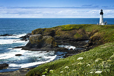 Yaquina Head Lighthouse Art Print by Carrie Cranwill