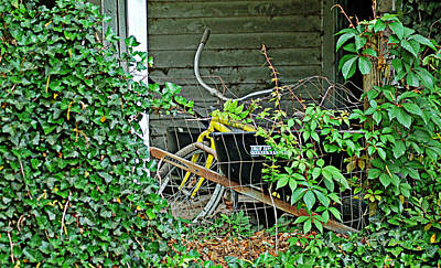 Photograph - Yellow Bicycle by Linda Brown