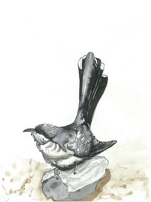 Cuckoo Mixed Media - Yellow Billed Cuckoo by Gregory Ellis