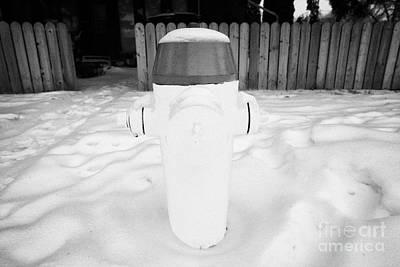 yellow fire hydrant in the snow by the side of the road Saskatoon Saskatchewan Canada Print by Joe Fox