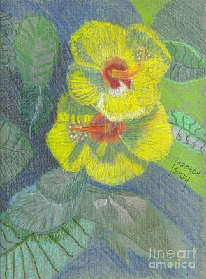 Drawing - Yellow Hibiscus by Rod Ismay